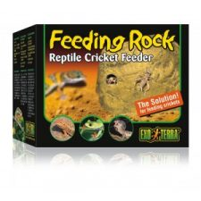 REPTILE FOOD AND WATER DISHES