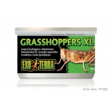 EXO-TERRA WILD GRASSHOPPERS XL – 34GM (1.2 OZ.)