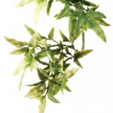 EXO TERRA FOREST PLANT – CROTON – SMALL