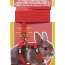 LIVING WORLD DWARF RABBIT HARNESS/LEAD SET – RED