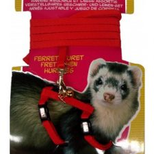 LIVING WORLD FERRET HARNESS/LEAD SET – RED