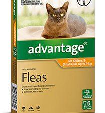 ADVANTAGE CAT 0-4KG 6 PK