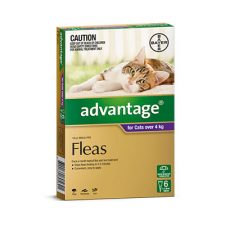 ADVANTAGE CAT 4KG + 6 PK