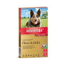 ADVANTIX DOG LARGE 10-25KG 6PACK