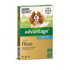 ADVANTAGE DOG 4-10KG 6 PK